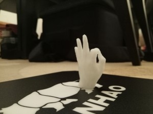 Wanhao 3d 2.1 Print ok hand